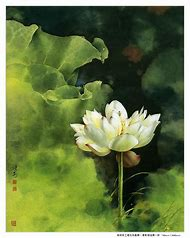 Traditional Chinese Flower Paintings