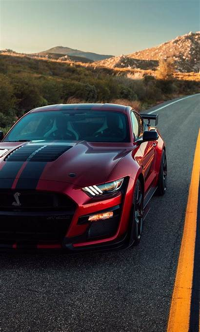 Mustang Gt500 Shelby Ford 4k Cat Itl