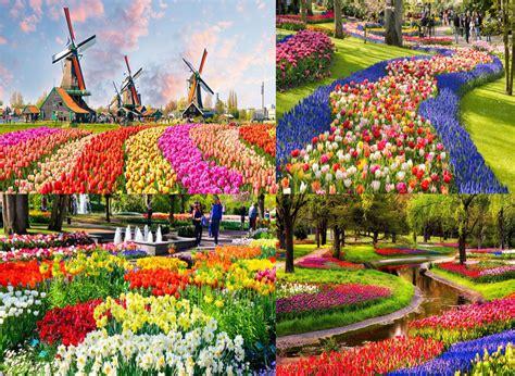 Ladang budaya atau juga disebut dengan ladaya ini dikelola oleh yayasan lanjong. Ditutup, Bagini Pemandangan Taman Bunga Terindah Dunia - geneannsyarns