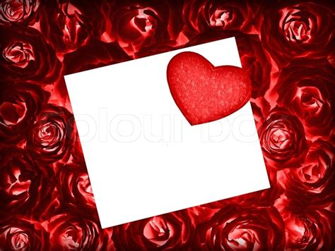 red fresh roses background  red heart  blank white