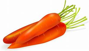 Vector carrot free vector download (246 Free vector) for ...