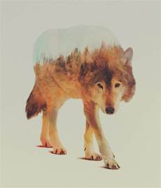 Double Exposure Animal Portraits by Andreas Lie | Colossal