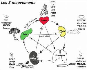 17 best images about academ qi gong 5 elements on With le feng shui et les couleurs 1 les 5 elements le cycle productif