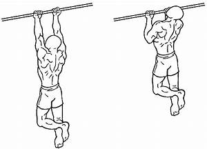 Top 6 Exercises For A Muscular Physique