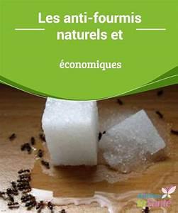 Anti Fourmi Naturel : anti fourmis naturels et conomiques astuces maison ~ Carolinahurricanesstore.com Idées de Décoration
