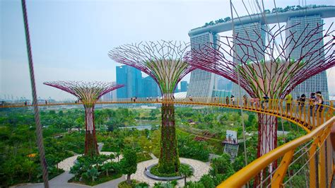 singapore gardens by the bay gardens by the bay in singapur expedia de