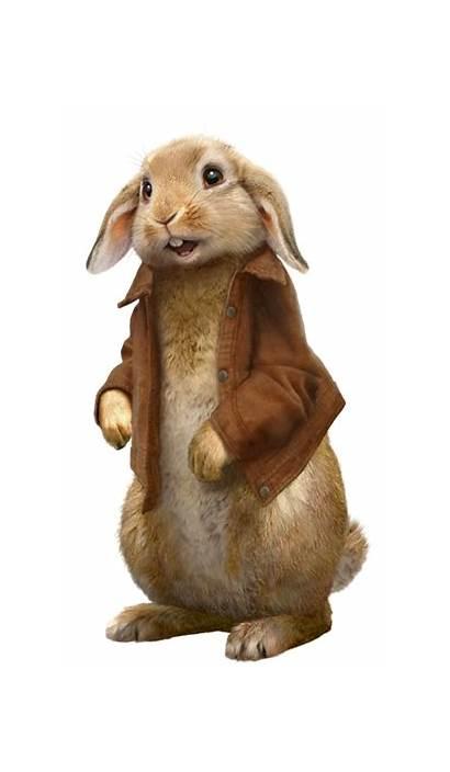Benjamin Bunny Animation Sony Film Wiki Wikia