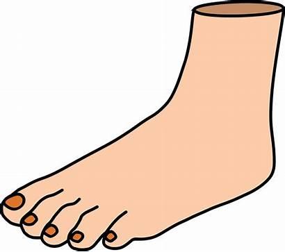 Foot Clipart Transparent Legs Kick Feet Dumielauxepices