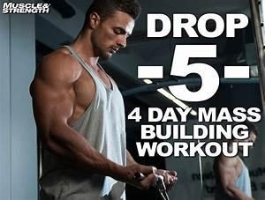 Drop 5 System  4 Day Mass Building Workout Split