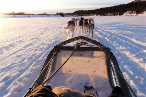 chambre et table d hote ardeche sejour neige et chiens de traineaux en rhone alpes