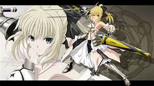 102 Saber Lily HD Wallpapers   Background Images ...