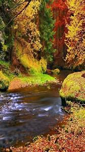Pin, By, Kallol, Bhattacharya, On, Amazing, Nature