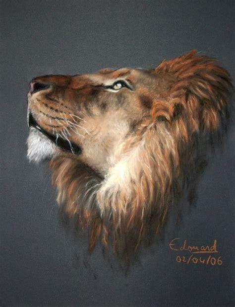 le lion dessin portrait edouard lefebvre graphisme