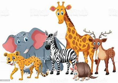 Animals Together Wild Animales Animal Clipart Juntos