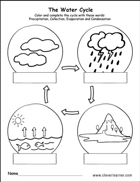 printable water cycle worksheets  preschools primary