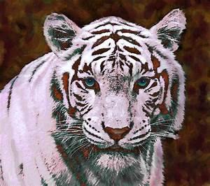 """Stunning """"Pop Art Tiger"""" Digital Artwork For Sale On Fine ..."""