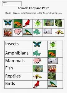 Animal classification this helps younger kids to get a ...