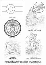 Columbine Designlooter sketch template