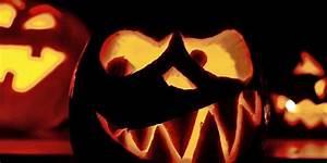 Halloween Deko Für Draussen : halloween deko f r drau en den garten und die haust r ~ Frokenaadalensverden.com Haus und Dekorationen