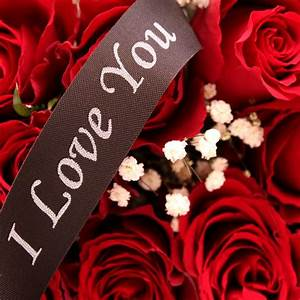 24 Red Roses | 2 Dozen Romantic Red Rose Bouquet | Floric