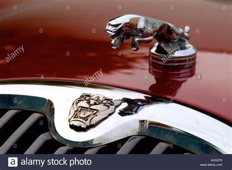Jaguar Cars Symbol by Jaguar Car Symbol Shine Modern Stock Photo Royalty Free