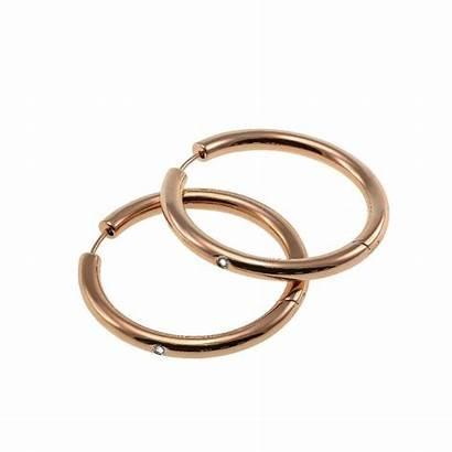 Earrings Gold Edblad Rose Marie Hoop Creole