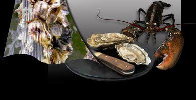 cuisiner les ormeaux cuisiner les fruits de mer conseils de la paimpolaise du large pour vos huitres moules et