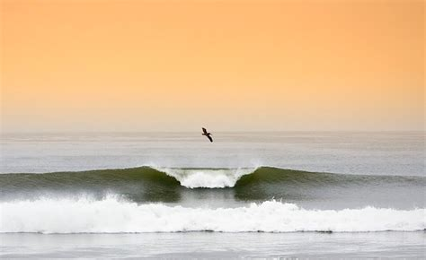 Surfing Lower Trestles: the jewel of Southern California
