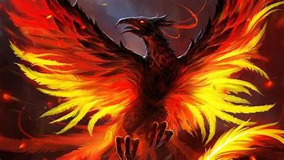 Phoenix 4k Bird Wallpapers Artstation Artwork Artist