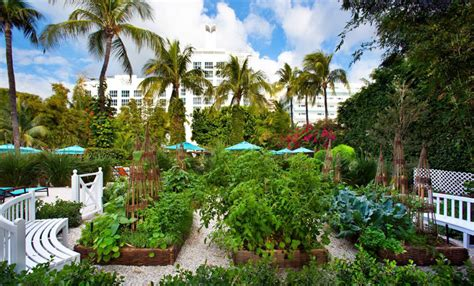 luxe magazine summer miami 8 of the 39 s most beautiful hotel gardens huffpost