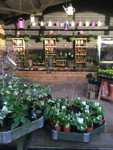 Garten Pflanzen Shop by Timmermans Garden Centre Nursery Garden Outdoor