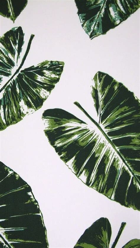wallpaper   leaf prints pattern wallpaper print