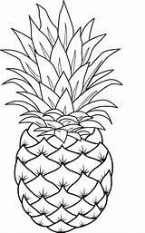 Pineapples Piña Gravado Vidrio Bordado sketch template