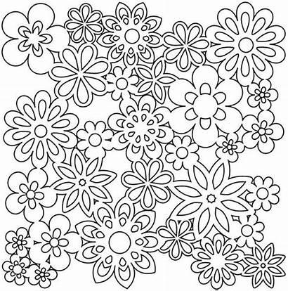 Coloring Pages Printable Flower Older Flowers Adult