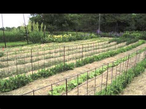 mulch no till garden at prairie road organic