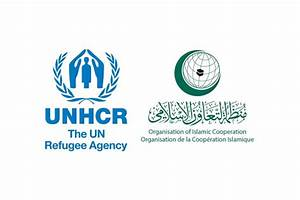 UNHCR, OIC join efforts in addressing a Comprehensive ...