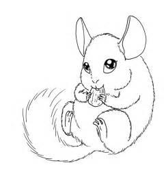 Chinchilla Drawing