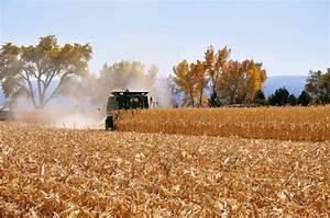 Western Colorado Food and Farm Forum | Unlocking the ...