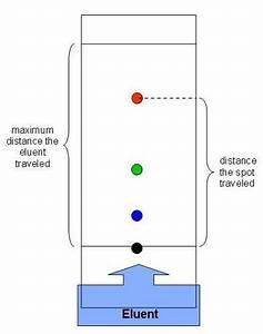 3n1 U0026 39 S Sci  Physics  Chemistry