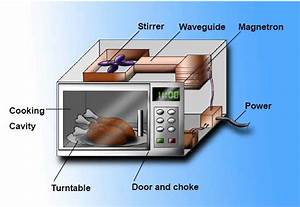 Microwave Cooking And Food Safety