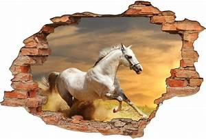Image Trompe L Oeil : stickers trompe l 39 oeil 3d cheval pas cher ~ Melissatoandfro.com Idées de Décoration