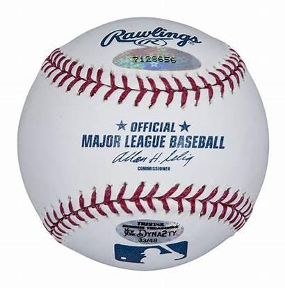 Yankees Baseball Memorabilia York Stadium Yankee Grass