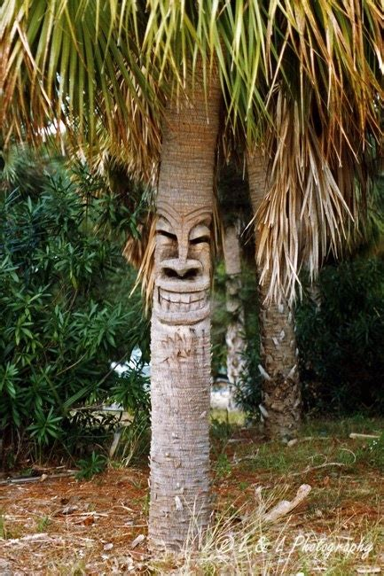 Palm Tiki by 413 Best Images About Tiki Carved Trunks On