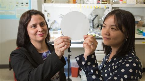 Uh Engineers Join Forces To Transform Water Purification