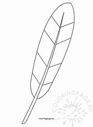 Best 25 ideas about turkey feather coloring page find what youll turkey feather template printable maxwellsz
