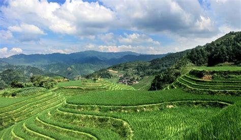 what is terrace farming worldatlas