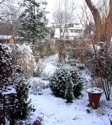 landscaping in winter marjorie harris blog 187 winter gardens
