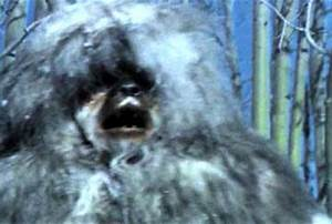 Snowbeast (reviewed by Lisa Marie Bowman) | Horror Critic