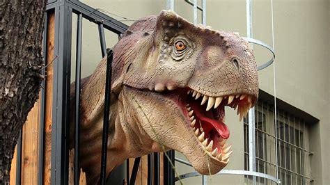 dinosaurier  kostenloses dino hintergrundbild