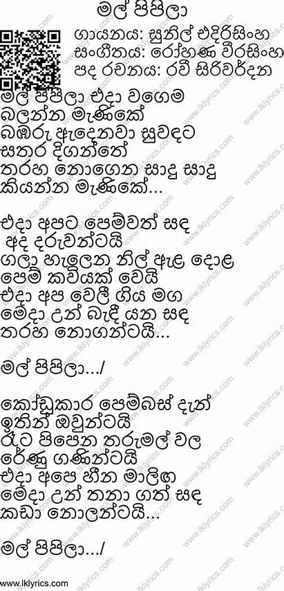 Mal Pipila Songs Lyrics Sunil Ravi